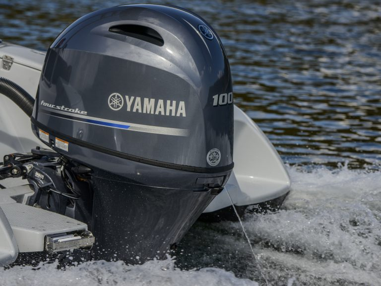 MOTEUR YAMAHA F100 FETL/X