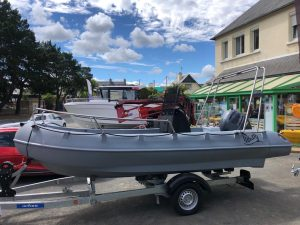 WHALY 500